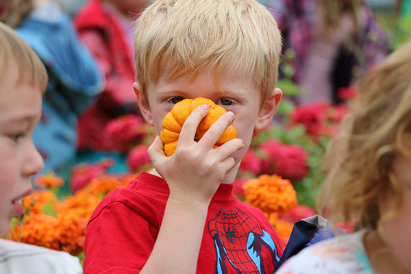 Harvest Fair at Hazel Creek Montessori